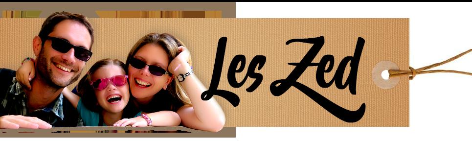 Logo LesZed voyage en famille